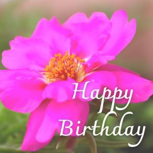 Dear Birthday - 8月3日 -