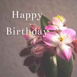 Dear Birthday - 8月5日 -