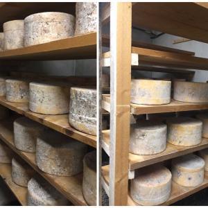 石造りの可愛いボヌヴァル村と幻のチーズ
