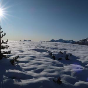 晴天の空の下、雪景色を楽しむ