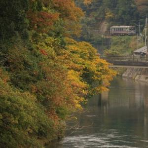西城川の朝