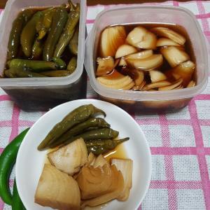 """韓国で食べられている食材⑧ 「唐辛子、唐辛子と玉ねぎの漬け物""""장아찌(チャンアチ)""""のレシピ"""