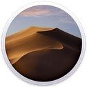 「セキュリティアップデート Developer/PublicBeta 2019-001 10.14.6」と「セキュリティアップデート 2019-001 (Mojave)」は別物