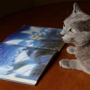 げんき絵本を読むw