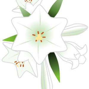 WORDの図形[星:6pt]の頂点を使ったユリの描き方