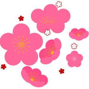 失敗しない梅の花の描き方