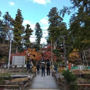 北鎌倉の紅葉と小鉢展