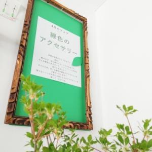 4月のフェア「緑のアクセサリー」開催中。