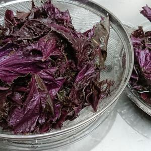 紫蘇ジュースレシピ(自分用備忘録)