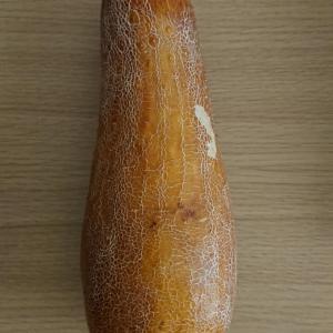 赤瓜モウイー