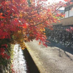 週末、本とカフェ好き初心者が無計画に京都をぶらりと行く②