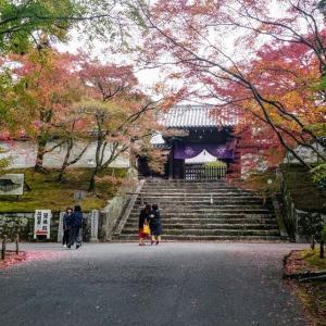 週末、本とカフェ好き初心者が無計画に京都をぶらりと行く