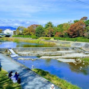 週末、本とカフェ好き初心者が無計画に京都をぶらりと行く⑤