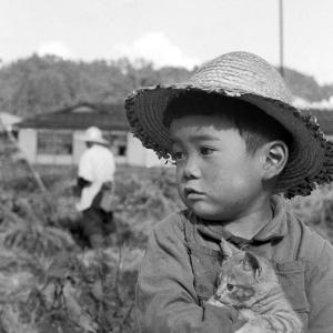 猫を抱く麦わら帽の少年