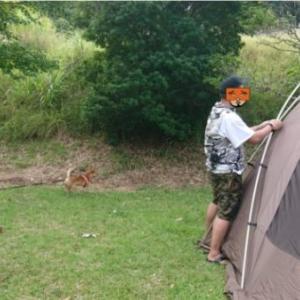Vinmoriの空調服ベストで真夏キャンプの設営どうでしょう?