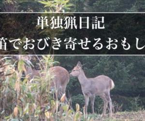 単独猟日記:シカ笛で大きなオスジカを目の前まで引き寄せる