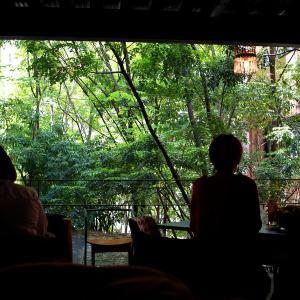 神戸北野異人街と神戸布引ハーブ園〜中京・近畿TRIP Day4