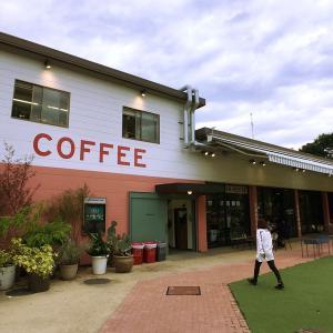 アメリカライクな開放的な空間が素敵。リトルダーリン コーヒーロースターズ(Little Darling Coffee Roasters) / 南青山