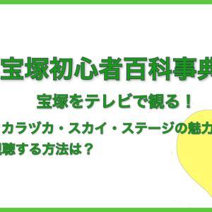 宝塚をテレビで観る!タカラヅカ・スカイ・ステージの魅力、契約ってどうするの?