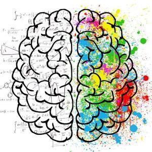 薬指の長さでわかる男性脳・女性脳