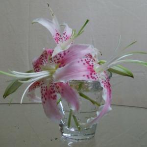 ゴミ捨て場から拾った花