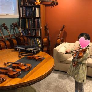 1/4バイオリン選び