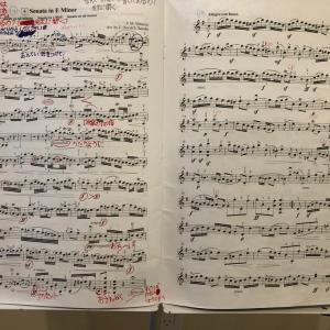 Veracini「Sonata in E minor」を弾いてイタリア演奏旅行に想いを馳せる