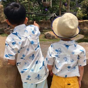 子連れ旅の定番コース☆ホノルル動物園