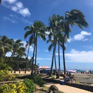 ハワイでも生活習慣は変えない!