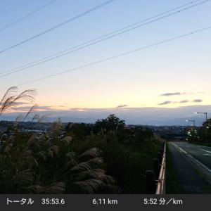 逝ってきました初ウルトラ(四万十川ウルトラマラソン):カヌー館(61.5km)~ゴール!!