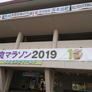 奈良マラソン(10km)への道:走り切れました!