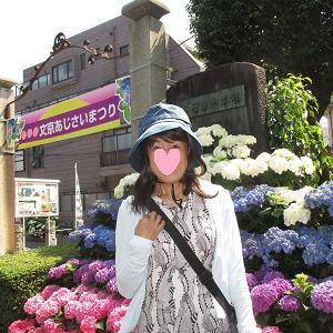 白山神社のアジサイ鑑賞