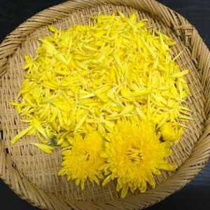 【菊の花の効能:甘みがあって美味しいだけではない】
