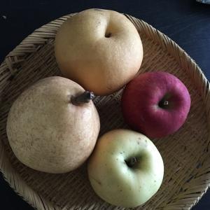 【梨派?りんご派?旬の果物をダイエットの味方にする】