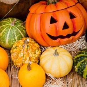 【ハロウィンはいつものかぼちゃ+で免疫力アップ】