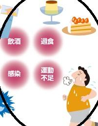 【痩せているのに脂肪肝!日本人は肥満ではなくても脂肪肝になりやすい】