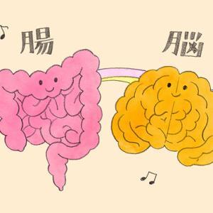 【便秘で脳が「空回り」脳腸相関とダイエット】