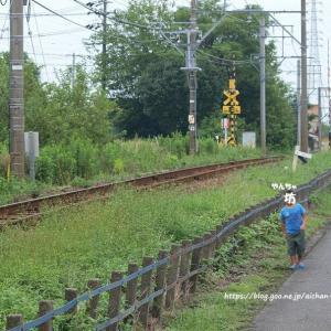 名鉄3104F