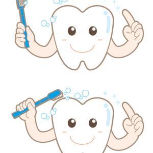 磁気活水効果 歯石がつかなくなる