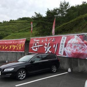 道-1グランプリ2019スイーツ部門グランプリ受賞!苺氷りオールトッピング(高知県幡多郡大月町・道の駅 大月)