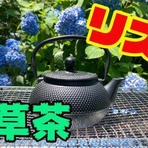 雑草で雑草茶を作って飲んでみた