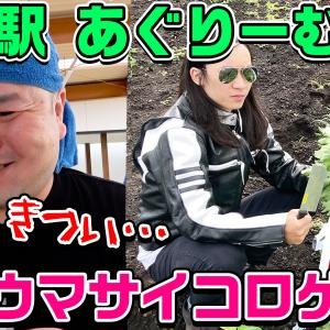道の駅あぐりーむ昭和で【死ぬウマ】サイコロゲーム!!