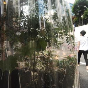 渋谷 32678