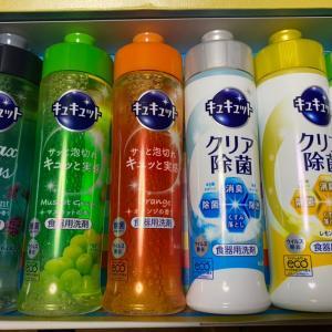 【株主優待到着】TAKARA&COMPANY、食器用洗剤が届いています。