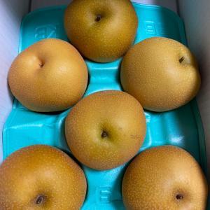 【株主優待到着】エスリード、梨が届きました。