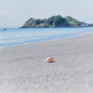 秋の湘南海岸を歩く