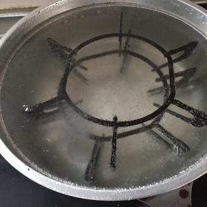 ゴトクを煮てみたけれど