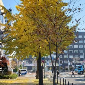 11月 北海道旅行 3日目 ①