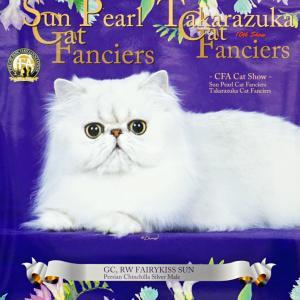 CFA TAKARAZUKA CAT FANCIERS CAT SHOW~☆