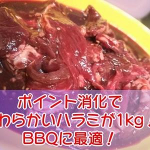ポイント消費で「極旨秘伝のタレ漬けハラミ1kg」を購入!やわらかいお肉が超美味しい。バーベーキューにもおすすめ!